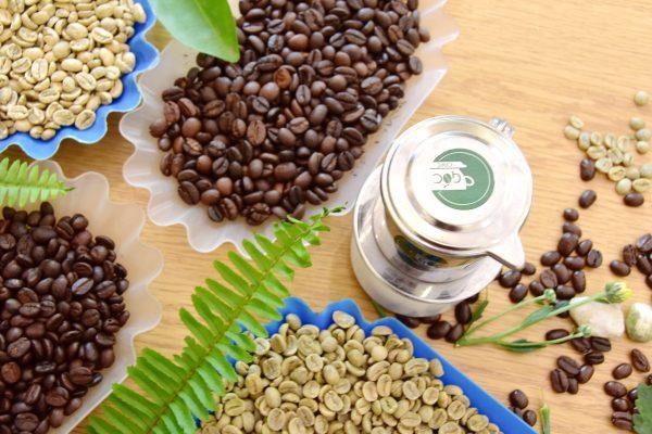 Caffeine có hàm lượng cao trong cà phê